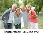 senior couples having a good... | Shutterstock . vector #319255592