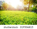 a park with greenland and trees ... | Shutterstock . vector #319506815