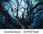 Dark Forest With Thorny Trees...