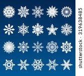 set of vector snowflakes | Shutterstock .eps vector #319638485
