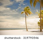palm trees on a beautiful sunny ... | Shutterstock . vector #319793546