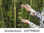 farmer examination  industrial... | Shutterstock . vector #319798835
