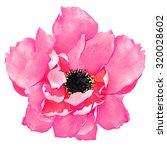 tilted rose | Shutterstock . vector #320028602