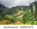 Early Fall Colors On The Misty...