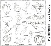 hand drawn vegetables with name.... | Shutterstock .eps vector #320141072