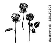 Stock vector three roses silhouette 320152805