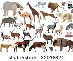 illustration with animals... | Shutterstock . vector #32018821