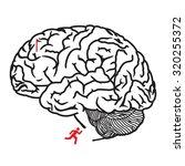 maze for children   human brain ... | Shutterstock .eps vector #320255372