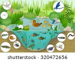 at the pond  | Shutterstock .eps vector #320472656