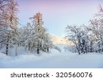 snowy winter road in julian... | Shutterstock . vector #320560076