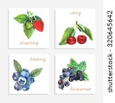 berry paper cards with... | Shutterstock . vector #320645642