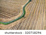 Aerial View On The Wheat Field...