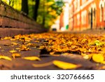 Autumn In The City  Alley That...