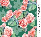 begonia watercolor and white... | Shutterstock . vector #320810726