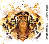 Tiger T Shirt Graphics  Tiger...