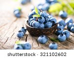 Freshly picked blueberries in...
