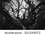 Bw Dark Forest With Thorny...