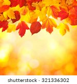 fall  autumn  leaves background.... | Shutterstock . vector #321336302