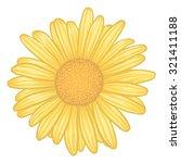 Beautiful Yellow Daisy Flower ...