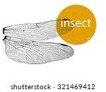 vector illustration   dragonfly ...