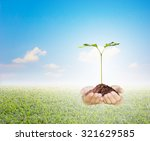 protecting the forest plant a... | Shutterstock . vector #321629585