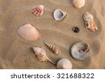 seashells on the beach | Shutterstock . vector #321688322