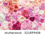 Stock photo flowers in the studio 321899408