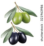 green and black olives with... | Shutterstock . vector #321963986