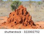Termite Mound In Savanna In...