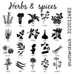 herbs and spices silhouette ... | Shutterstock .eps vector #322012682