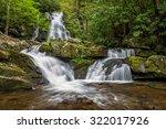 summer foliage at spruce flats... | Shutterstock . vector #322017926