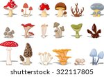 Different Kinds Of Mushrooms