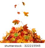 pile of fall leaves  | Shutterstock . vector #322215545