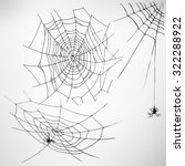 Black Spider Web With Spiders....
