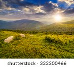 meadow  with white boulders on... | Shutterstock . vector #322300466