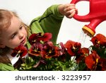 Beautiful little  baby girl and  red  pansy flowers - stock photo