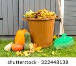 Pile Of Dead Fall Leaves Dumped ...