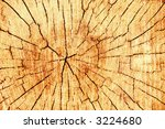close up wooden cut texture | Shutterstock . vector #3224680