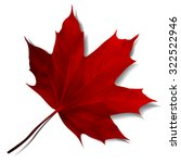 Realistic Red Maple Leaf...