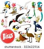 adorable cartoon comic birds... | Shutterstock .eps vector #322622516