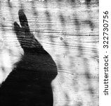 Small photo of Shadow of a Rabbit with ears and whiskers showing on a wooden background black and white