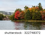 Multicolored Fall Trees At A...