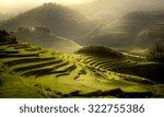 Terrest Rice Field Sapa  Vietnam