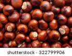 Fall Conkers With White Patche...