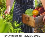 chef harvesting fresh produce... | Shutterstock . vector #322801982