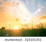 Meadow Sunrise Background.