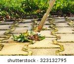 photos shows a closeup of... | Shutterstock . vector #323132795
