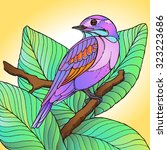 colorful tropical bird in pink...   Shutterstock .eps vector #323223686