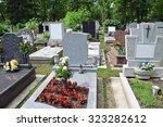 tombstones in the public... | Shutterstock . vector #323282612