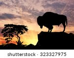 Silhouette Of The Buffalo On...